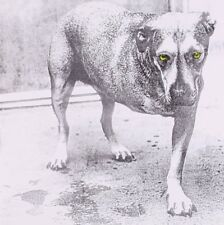 ALICE IN CHAINS ALICE IN CHAINS 1995 CD ALTERNATIVE METAL GRUNGE BRAND NEW