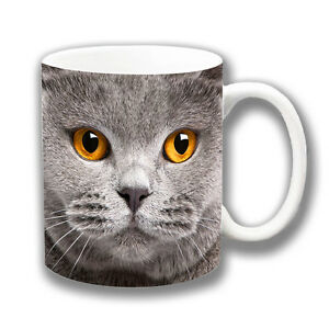 GREY CAT FACE AMBER EYES  UNIQUE COFFEE MUG CHRISTMAS GIFT OR STOCKING FILLER