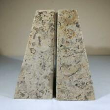 More details for fossilstone fossil coral large bookends - home decor - himalayan 4.2kg
