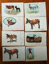Antique DONKEY Postcards LOT of 8 Cards 1905