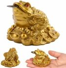 Chinese Feng Shui Lucky Money Toad Fortune Frog Craft Home Decor Attract Wealth