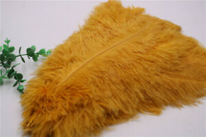 Wholesale 10-100pcs high quality natural ostrich feathers 15-60cm / 6-24inch