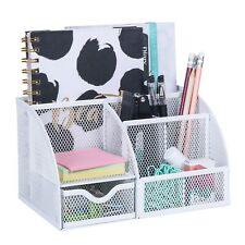 EXERZ Mesh Desk Organizer/Desk Tidy/Pen Holder/Multifunctional Organizer (White)
