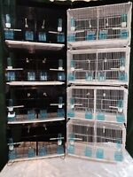 3 sets of 4 X Double Canary budgies  zebra  Breeding Cages 3 x (set of 4 cages )
