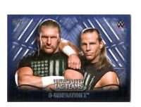 WWE D-Generation X 2016 Topps Undisputed Tag Teams Parallel Card SN 18 of 25