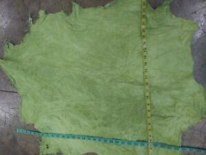 Italian Lambskin Leather Skin Hide Lamb  Green Bug 6 Sq.Ft. 2 oz. (S).
