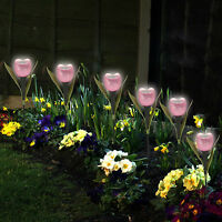 Garden Tulip Flower Shape LED Solar Powered Lights Outdoor Yard Standing Decor
