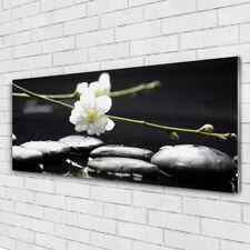 Glasbilder Wandbild Druck auf Glas 125x50 Blumen Steine Kunst