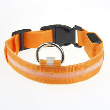 Safety 1PC LED Pet Dog Collar Flashing Luminous Adjustable Small Pet Supplies