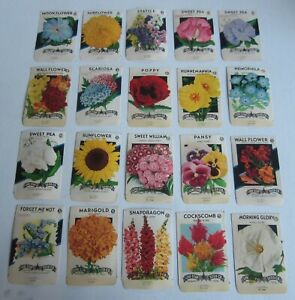 Lot of 20 Old Vintage 1940's FLOWER SEED PACKETS - Lone Star - TEXAS - EMPTY
