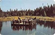 Manistique Michigan Kitch Iti Ki Spring Floating Pier Vintage Postcard K19181