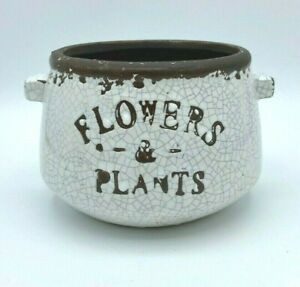 Rustic 2 Handled Bowl/Crock/Planter with Crackle Finish  Flowers & Plants