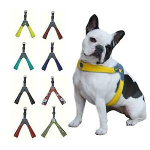 Coralpina Cinquetorri Adjustable Mesh Dog Harness,Various Sizes / Colours