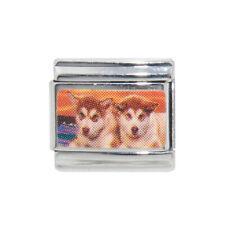 Husky Dog photo enamel Italian charm - fits 9mm classic Italian charm bracelet
