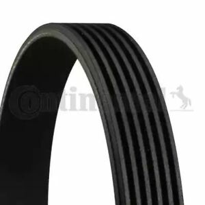 Drive Belt 6PK1893 by Continental OE