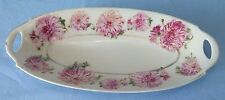 Vintage Hand Painted Porcelain Pm Bavaria Celery Dish Moschendorf Factory