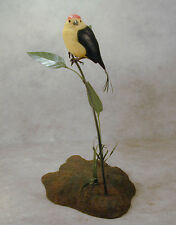Wire-tailed Manakin Original Wood Carving