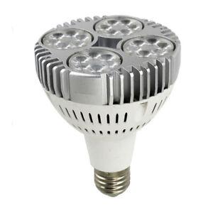 PAR30 E27 35W White LED BULB LAMP 110V-220V  Floodlight Ceiling Down Spot Light