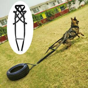 X-Back Sledding Dog Weight Pulling Harness Black Adjustable Large Breeds Pitbull