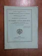 Rousset ÉCORCES À TAN CHÊNE YEUSE Exposition Universelle 1878 Provence TANNERIE