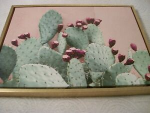 """Contemporary""""Prickley Pear Cactus Print on Canvas""""-Unsigned-18"""" x 24"""""""