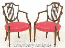 Hepplewhite Arm Chairs - Antique Mahogany Circa 1900