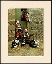 BORDER COLLIE PUPS  DOGS HORSE TWO BOYS IN KILTS LOVELY DOG PRINT READY MOUNTED