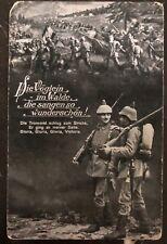 1916 Graidenz Austria Feldpost Picture Postcard Cover Birds On The Woods
