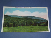 VINTAGE BLUEBERRY MOUNTAIN TUPPER LAKE   NEW YORK   POSTCARD