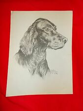 Gladys Emerson Cook bookplate Labrador Retriever English Irish Setter 2 sided