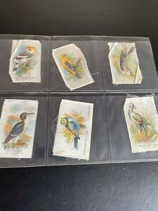 Godfrey Phillips Birds B.D.V. Silks x 12 Silks