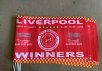 Liverpool Champions 2020 flag. Premier League winners. 3 x 2 size  with FREE P&P