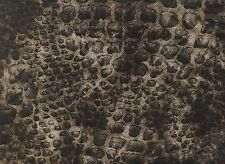 Faux Animal Fur Polyester Fabric (x 1.6 metres)