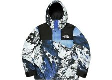 Supreme X TNF Mountain Parka taglia media The North Face FW17 in mano