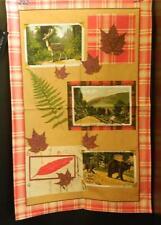 Woodland Lodge Cotton Tea Towel Ulster Weavers UK Bear Maple Leaf Fern