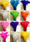 5-100 pcs beautiful Cute rooster tail feathers 10-12 inches / 25-30 cm