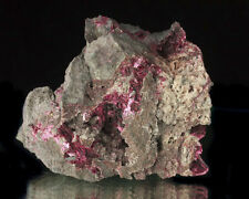 """3"""" Magenta Purple ERYTHRITE Sharp Lustrous Crystals in Matrix Morocco for sale"""