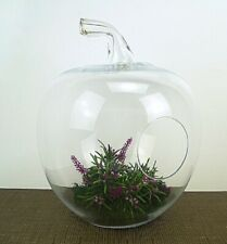 Glass Large Apple shape 37 cm H Terrarium jar lantern planter tea light holder