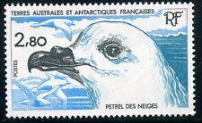TIMBRE T.A.A.F. / TERRES AUSTRALES NEUF N° 110 ** FAUNE / PETREL DES NEIGES