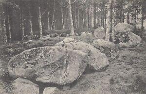 Große Steine, KLeinenkneten bei Wildeshausen ngl F1078