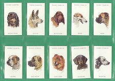 JOHN  PLAYERS  &  SONS  -  SCARCE  SET  OF  50  DOGS  HEADS  CARDS  -  UNIS