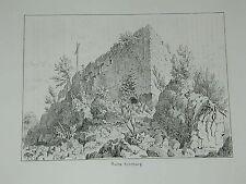 Kenzingen Baden Ruine Kürnburg Vier Ansichten Original Litho Lederle 1879