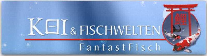 fantastfisch