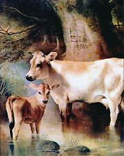 8x10 Douglas Print Dairy Farm Animal Livestock Jersey Cow Calf Cattle Landscape