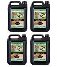Black Spot Lichen Remover Sandstone Natural Stone Drive & Patio Cleaner 10l