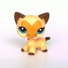 Littlest Pet Shop Short Hair cat LPS Heart Face Yellow Tan Kitty toys #3573