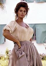 Sophia Loren # 11 - 8 x 10 T-shirt iron-on transfer