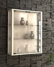 Wall Mounted Glass Display Cabinet Double Retail or Domestic Optional LED Light