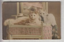 CPA  ANIMAL FANTAISIE -  CHAT CAT PHOTO COUPLE SUR COIFFEUSE TOILETTE 1910 ~B65