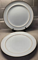 """Set of 2 Denby Langley Sienna Dinner Plates 11"""" England Blue With Brown"""